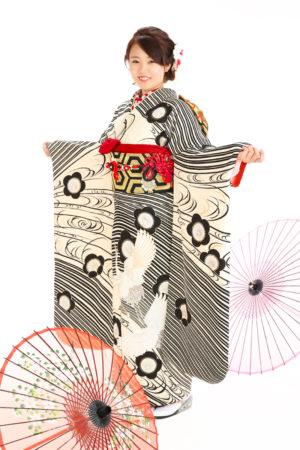 成人式・振袖・20歳祝い・鶴・白×黒・梅