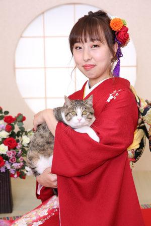 東京都 江戸川区 二十歳 成人式 振袖前撮り ペットと一緒 猫
